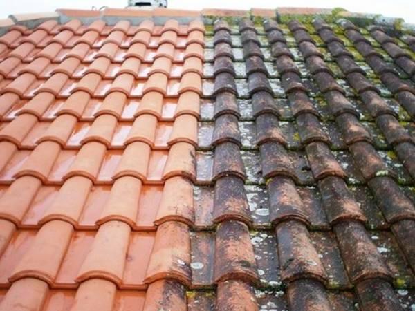 Prix nettoyage toiture 100 m2 : Comparez les Prix