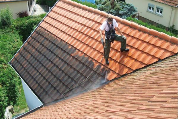 démoussage naturel et permanent pour toitures