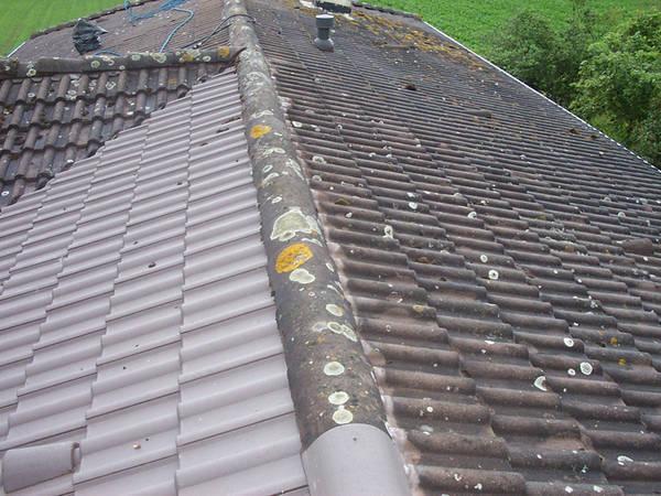 Prix nettoyage et traitement toiture : Comparez les prix gratuitement