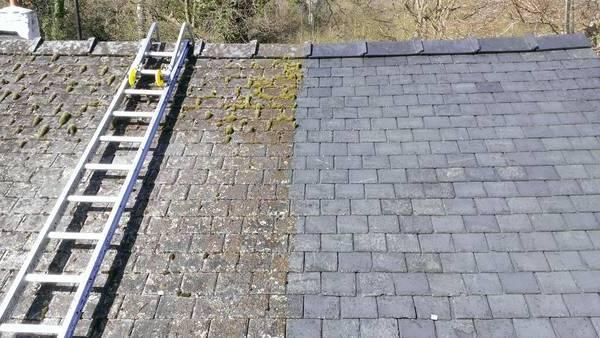 Démoussage naturel et permanent pour toitures : Devis personnalisés gratuits