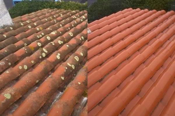 Nettoyage démoussage toiture prix : Devis Gratuit et Sans Engagement