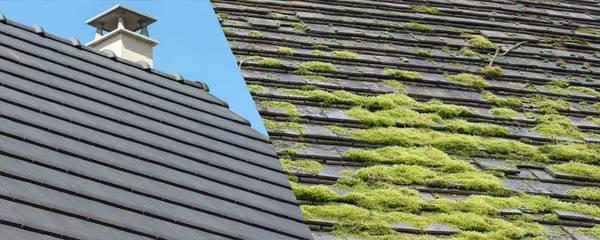 Tarif nettoyage toiture tuiles : Devis gratuit en ligne