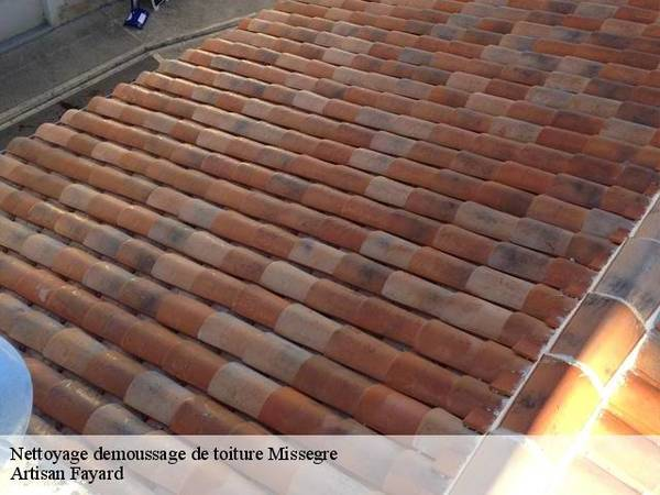 Coût nettoyage toiture ardoise : Devis personnalisés en ligne